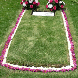 demarcacion con flores en jardines de paz 300x300 - Demarcación con flores